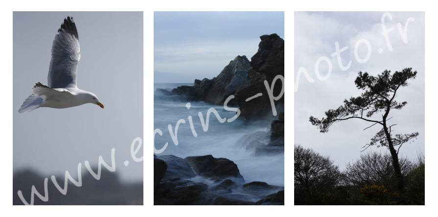 Naturellement breton