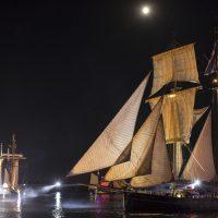 Le Wylde Swan lors de la parade nocturne